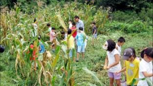'비대면 관광 최적지' 전남 농촌체험관광 인기