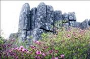 무등산권 세계지질공원, 지오푸드 네트워크 가입